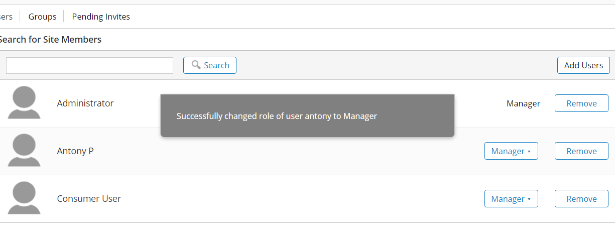PublicSite1 role to manager
